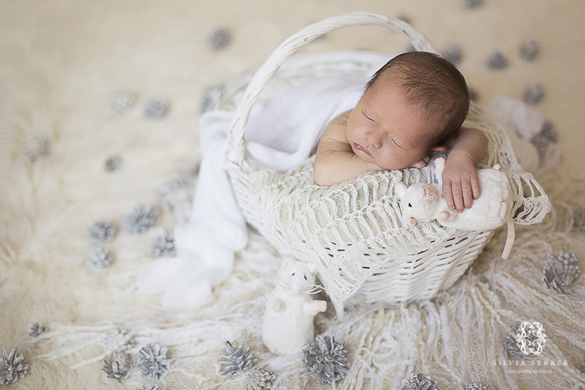 Fotografos de bebes recien nacidos