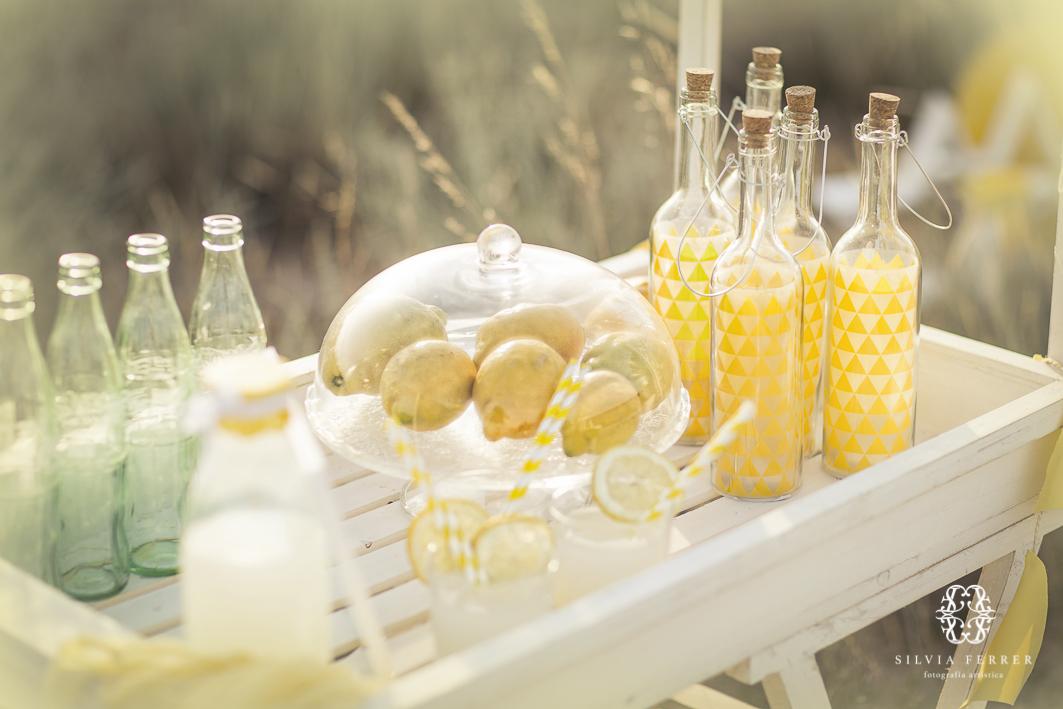 sesion de limonada