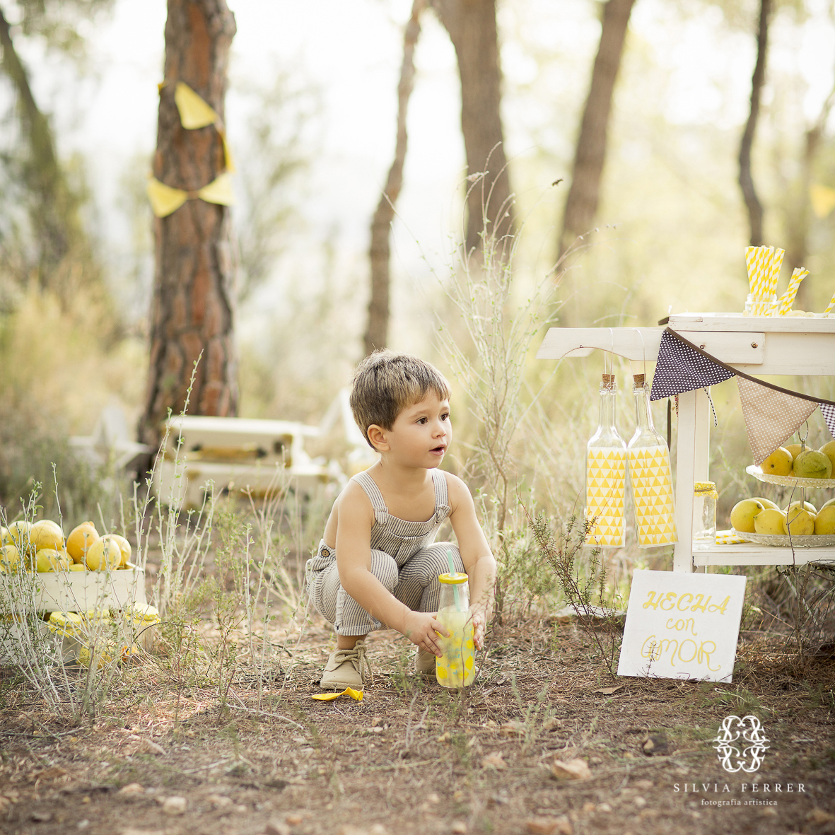 lemonade mini session