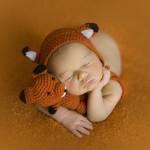 props atrezzo zorro fox naranja newborn